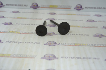 Комплект клапанов Racer 300 170FMN 170FMN014/170FMN015