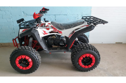 Квадроцикл Wels Thunder EVO X (200см3)